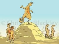 mongoosedance
