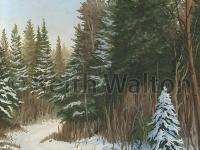 winter-trail100